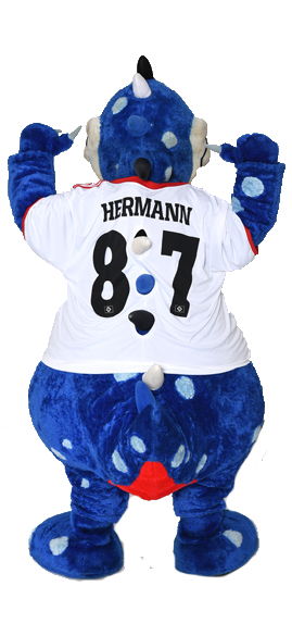 Dino Hermann | HSV.de
